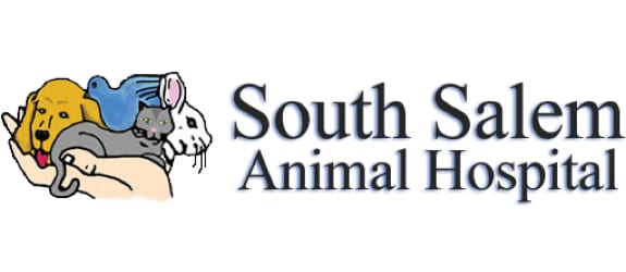 South Salem Animal Hospital